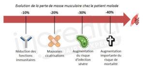 masse musculaire, patient, malade, protéines, gestion du poids, infection